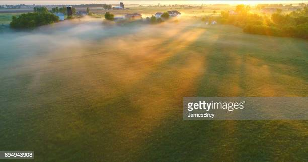 Sunbeams through ground fog in Springtime fields