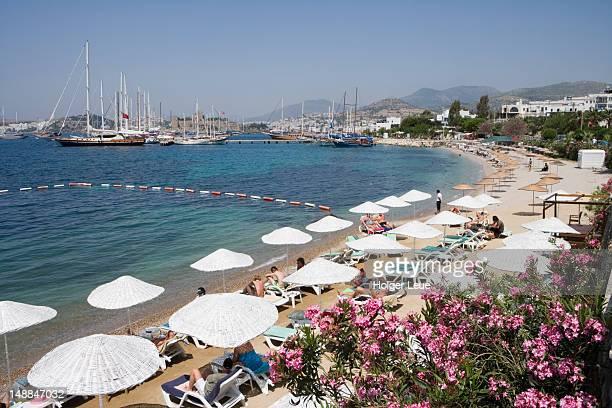 Sunbeds and sun umbrellas on beach.