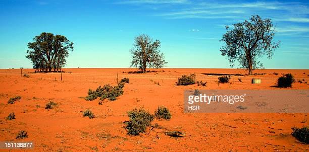 Sunburnt land