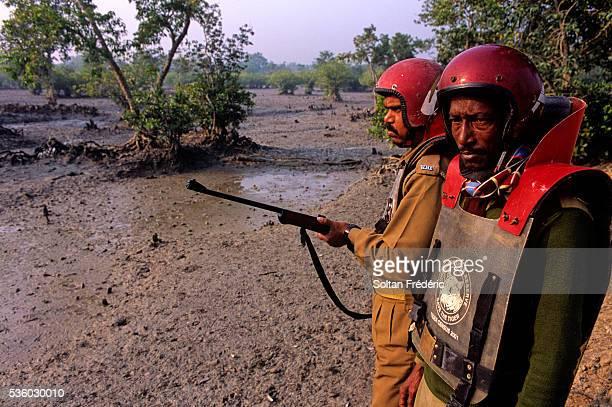 Sundarbans Delta