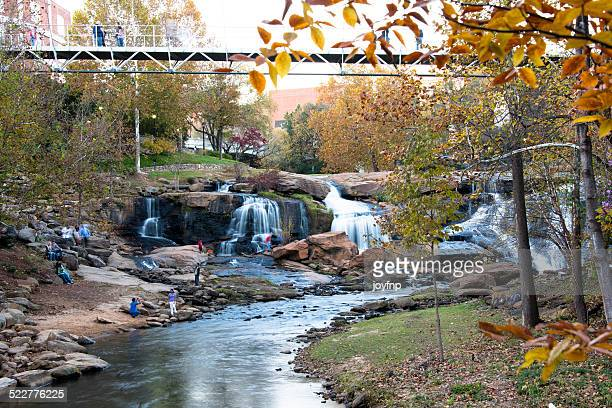 sunday afternoon at the park, greenville, south carolina - greenville south carolina stock photos and pictures