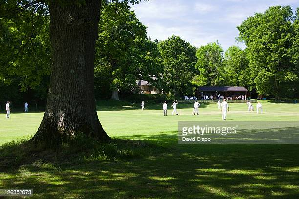 sunday afternoon cricket on the cricket field in the village of lustleigh. - wicket stock pictures, royalty-free photos & images