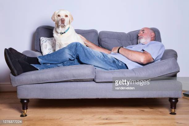 sunday afternoon rest - short sleeved stock pictures, royalty-free photos & images
