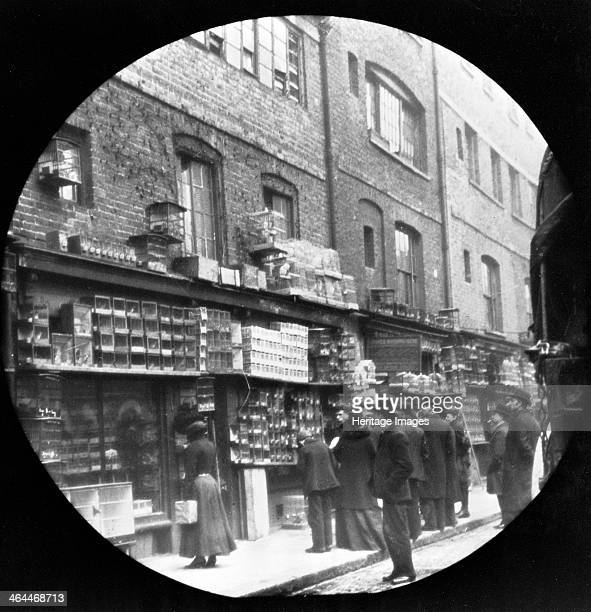 Sunday bird fair Sclater Street off Brick Lane London c1900 People standing outside a shop the wall of which is covered with cages full of birds Galt...
