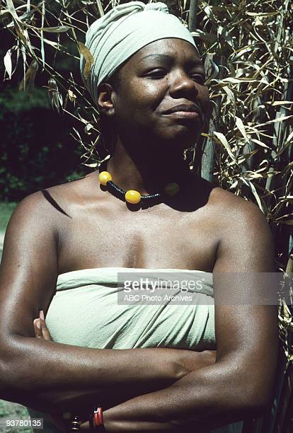"""Sunday, Jan. 23-Sunday. Jan. 30 The 12-hour Walt Disney Television via Getty Images Novel for Television """"Roots"""", which aired for eight consecutive..."""