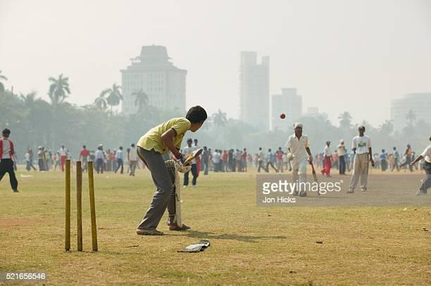 Sunday Morning Cricket