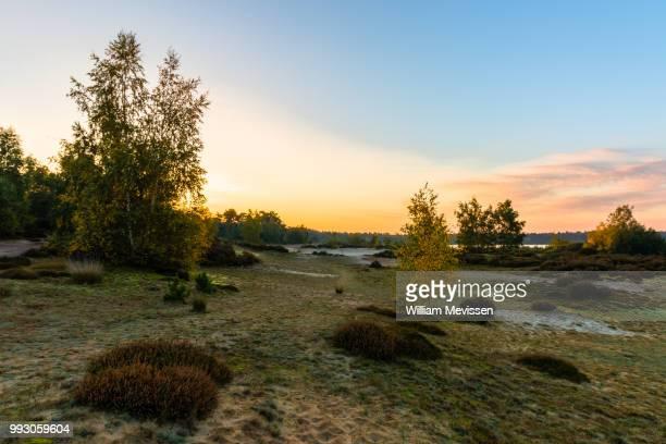sunday morning sunrise - william mevissen imagens e fotografias de stock