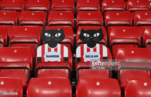 Sunderland cat cardboard mascots Samson and Delilah are pictured sitting in the empty stand ahead of the Sky Bet League One match between Sunderland...