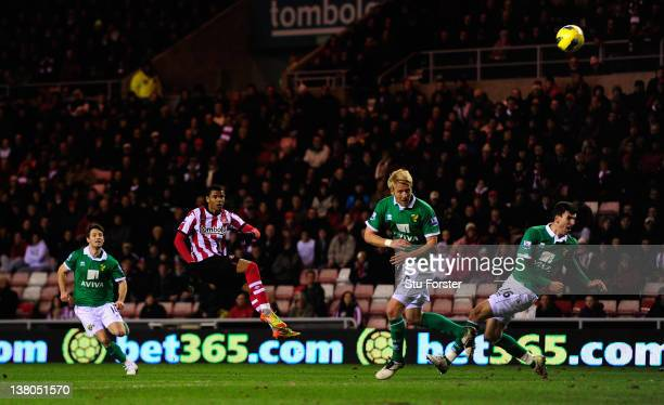 Sunderland striker Fraizer Campbell scores the first Sunderland goal during the Barclays Premier League game between Sunderland and Norwich City at...