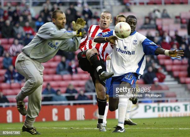 Sunderland's Stephen Elliott tussles with Crystal Palace's Darren Powell and Gabor Kiraly.