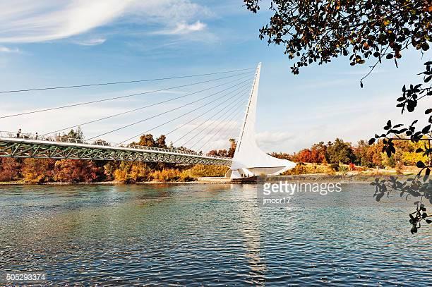 Sundial Bridge with Visitors in Redding California
