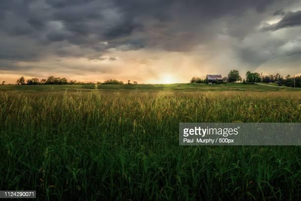 sundown on the farm - ontario kanada stock-fotos und bilder