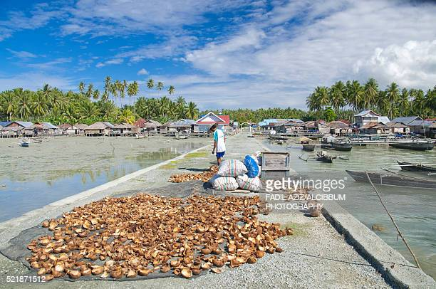 sun-drying coconuts (copra production), tete-b village, sulawesi, indonesia - central sulawesi stock pictures, royalty-free photos & images