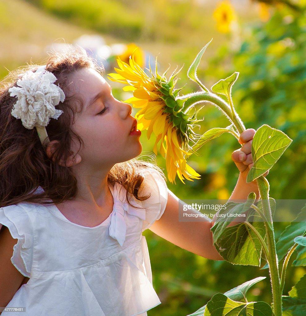 Sunflower girl : Stock Photo