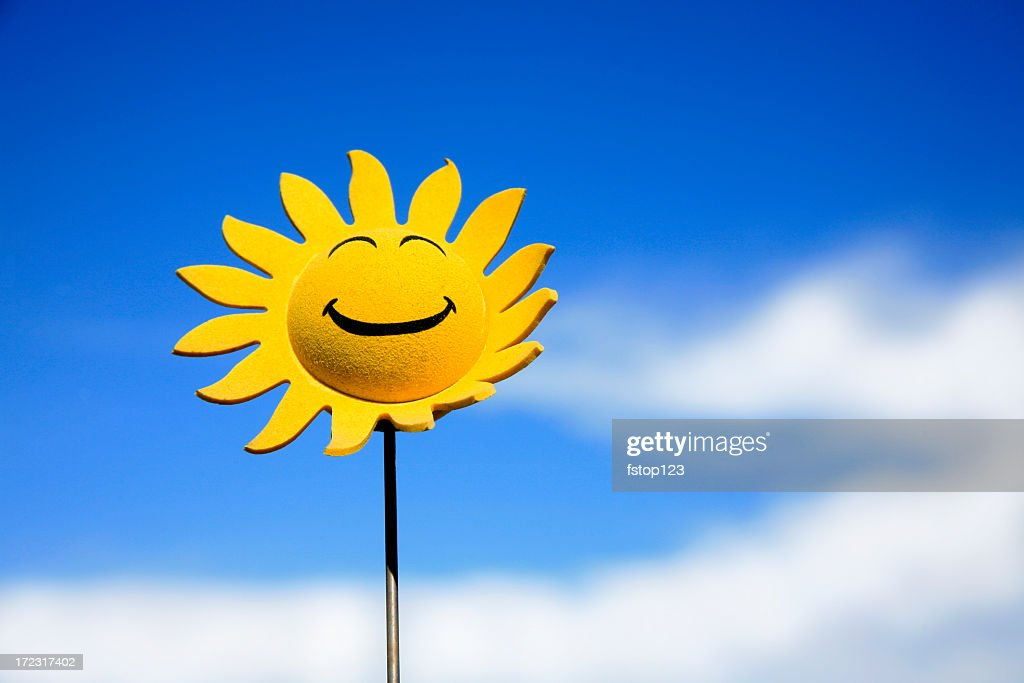 Sunflower smiley face : Stock Photo