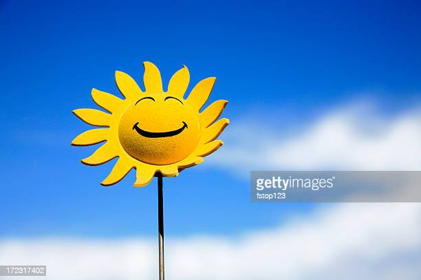 sunflower smiley face - smiley face stock pictures, royalty-free photos & images