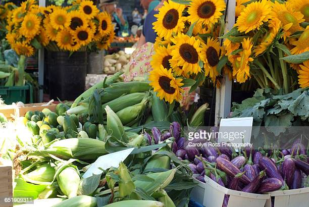 sunflowers at the market - carolyn ross stock pictures, royalty-free photos & images