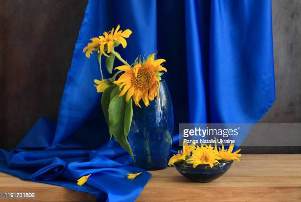 sunflowers in blue - still life stock pictures, royalty-free photos & images