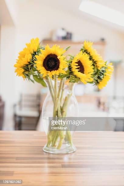 sunflowers - molho arranjo imagens e fotografias de stock