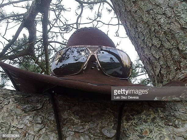 sunglasses and hat at the tree - reflection lake stock pictures, royalty-free photos & images