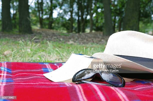 Sunglasses With Sunhat And Book On Picnic Blanket In Park