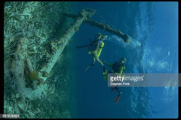 Sunken Anchor With Coral Growth