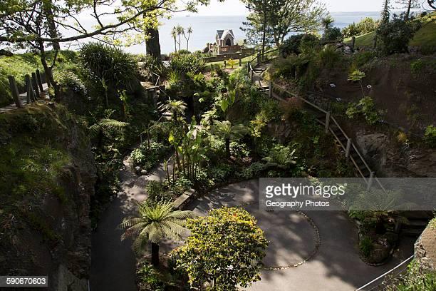 Sunken sub-tropical garden, Gyllyngdune Gardens, Falmouth, Cornwall, England, UK.