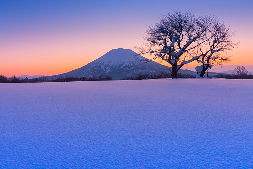 Sunlight and Mt Yotei, Hokkaido, Japan - gettyimageskorea