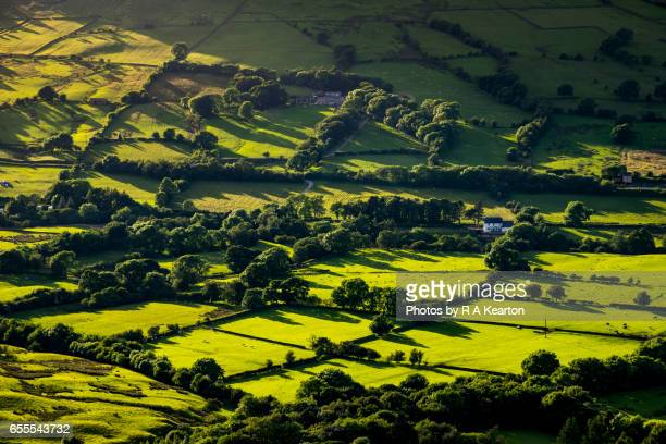 Sunlight and shadows on green fields