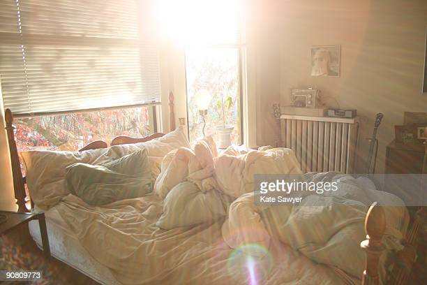 Sunlight Bedroom
