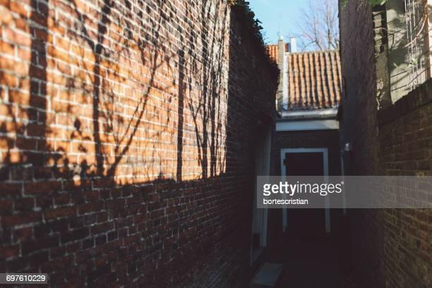sunlight falling on brick wall by house - bortes cristian stock-fotos und bilder