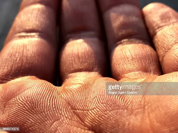 sunlight falling on hand - fingerprint stock pictures, royalty-free photos & images