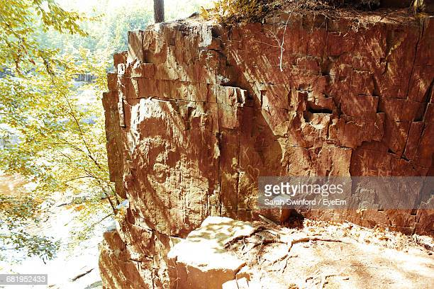 sunlight falling on rock formation against tree at forest - sarah hardy stock pictures, royalty-free photos & images