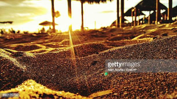 Sunlight Falling On Sand At Beach During Sunset