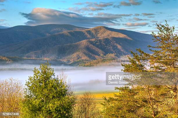 sunlight on cades cove mountains - parque nacional das great smoky mountains - fotografias e filmes do acervo