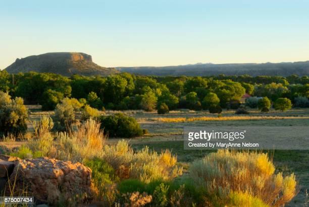 Sunlight on New Mexico Scene