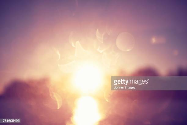 sunlight - lens flare stock pictures, royalty-free photos & images