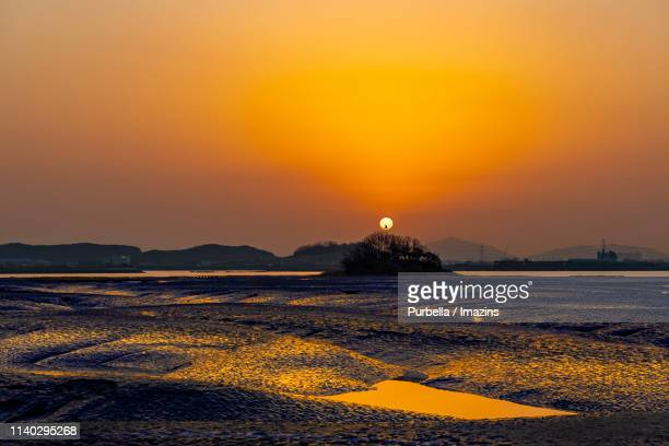 sunlight reflected on mud flat in hwangsando island, south korea - purbella stock photos and pictures