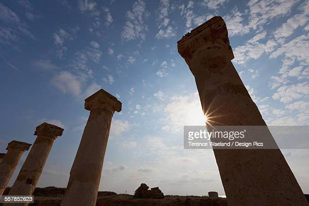 sunlight shining on a row of columns - terence waeland stock pictures, royalty-free photos & images