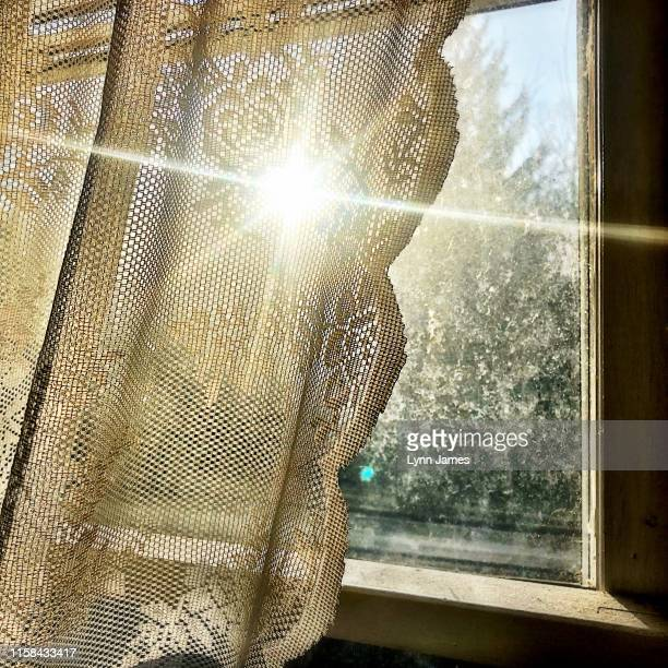 sunlight through lace curtain - レース生地 ストックフォトと画像