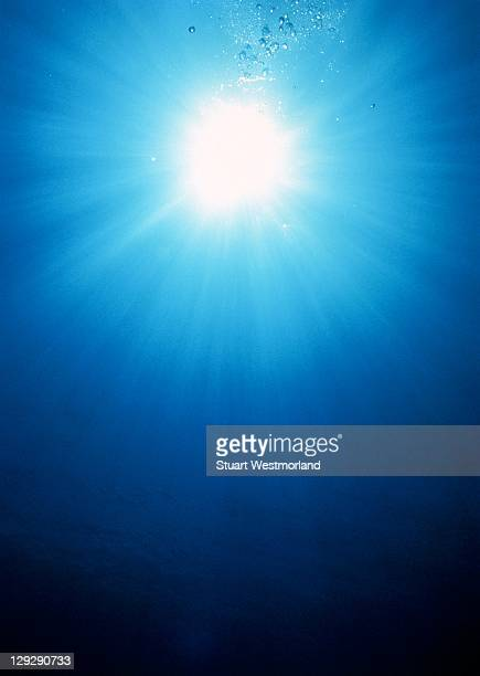 D1042 Sunlight underwater