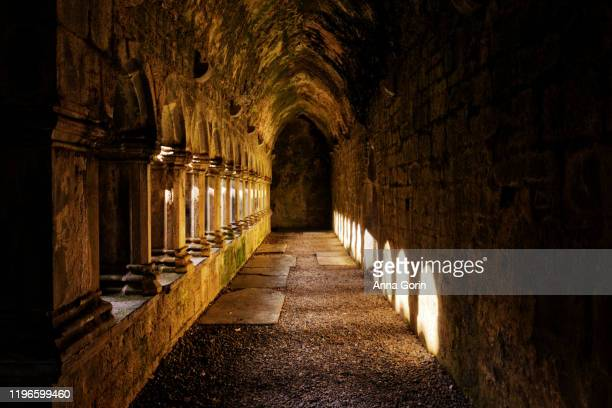 sunlit corridor in ruins of 15th-century quin abbey, county clare, ireland.  the abbey is free and open to the public. - castle stock pictures, royalty-free photos & images