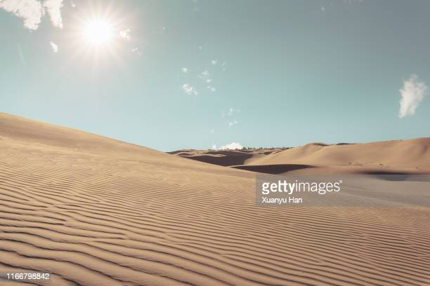sunlit desert landscape - ruffled stock pictures, royalty-free photos & images