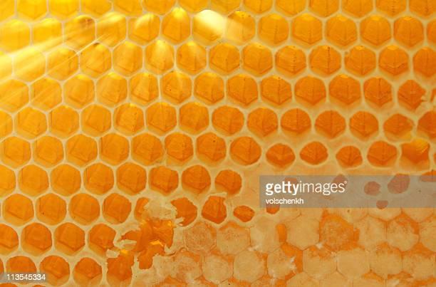 Iluminado pela luz Favo de mel
