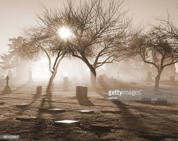 Sunlit misty graveyard in various gray tones