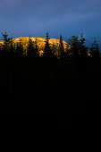 sunlit mountain behind trees
