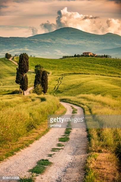 sunny afternoon in tuscany - siena province stock pictures, royalty-free photos & images