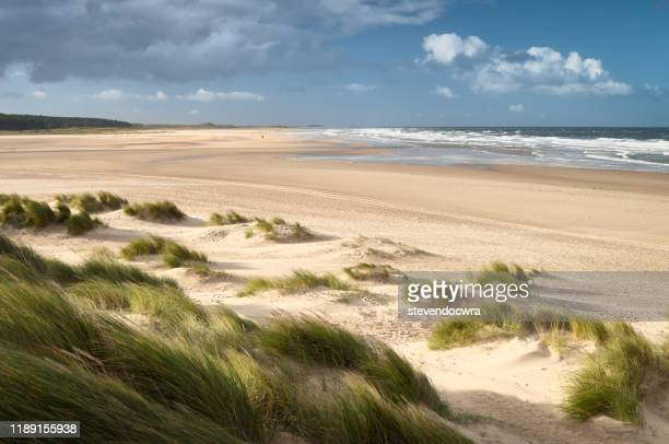 sunny afternoon on the north norfolk coast at holkham beach - 英国ノーフォーク ストックフォトと画像