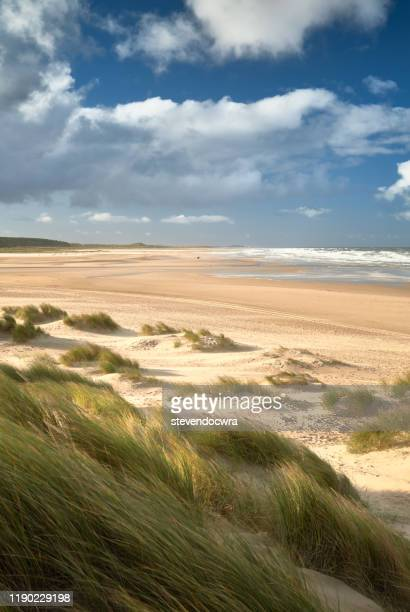 sunny afternoon on the north norfolk coast at holkham beach - norfolk east anglia foto e immagini stock