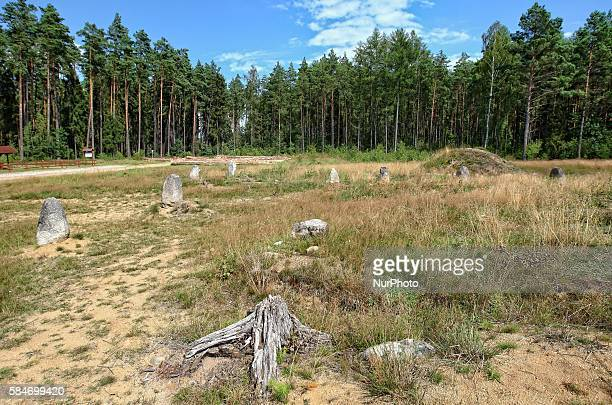 Sunny and warm day in northern Poland village of Tratkownica it is good reason to visit old misterious cemetery in Tratkownica The cemetery in...